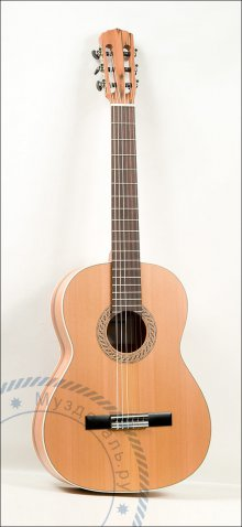 Гитара классическая Aragon AT-P229C