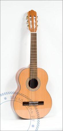 Гитара классическая Kremona Sofia Soloist S53C 1/2