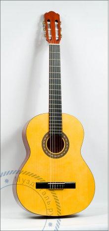 Гитара классическая Hora Laura