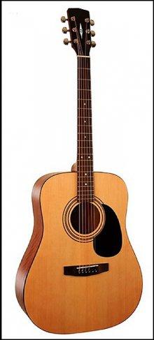 Гитара акустическая Parkwооd W81-12EQ