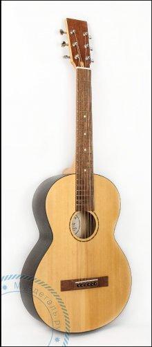 Гитара акустическая AMADINA MMS F-SN