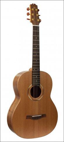 Гитара акустическая NewTone 17 Rosewood