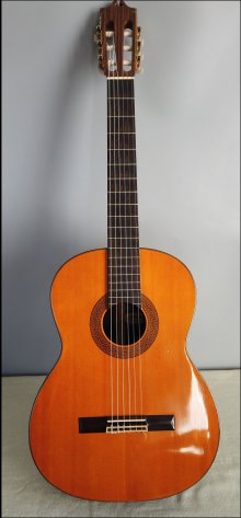Гитара классическая El Degas ED350