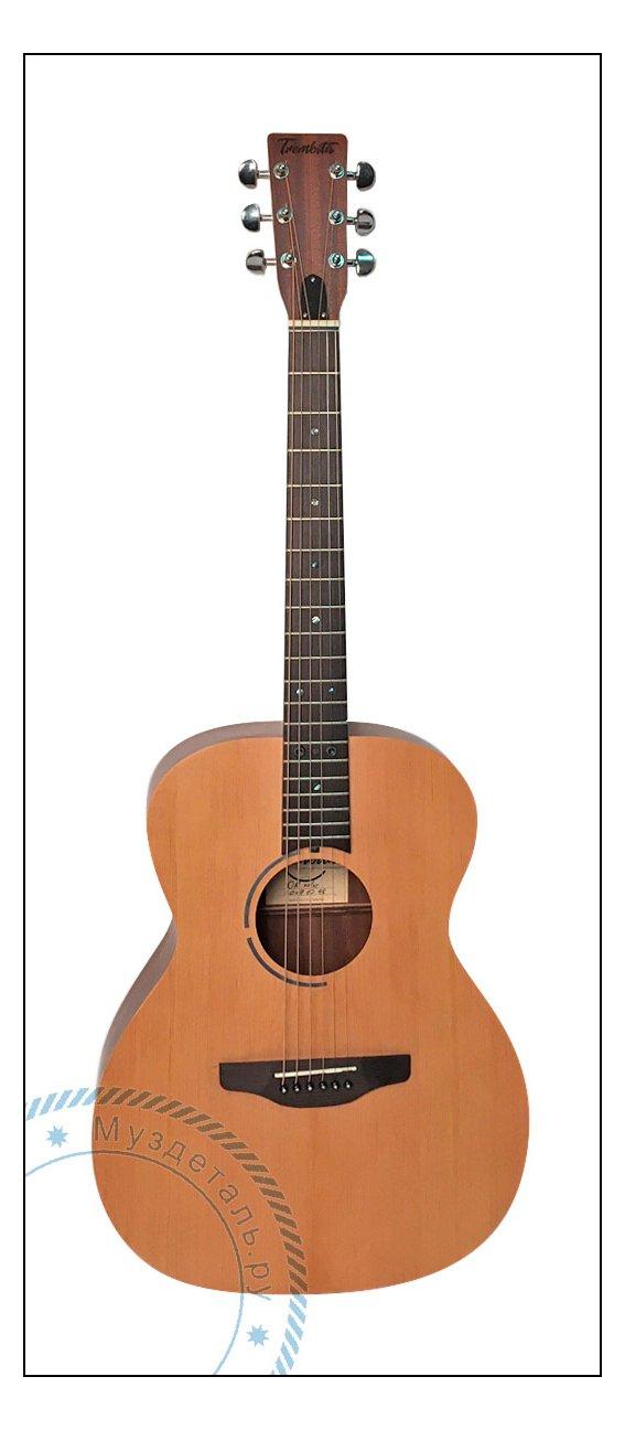 Гитара акустическая Trembita TW OM