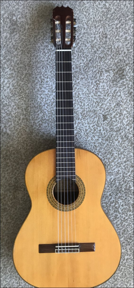 Гитара классическая La Esperanza 700