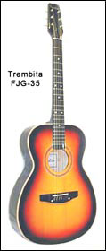 Гитара ТРЕМБИТА 35